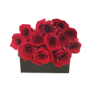 Dozen (12) Fresh Red Roses in a Luxury Presentation Box