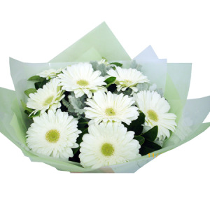 WHITE GERBERAS BOUQUET