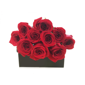 10 Red Roses in a Presentation Box